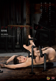 DASD-277 美女SM拷问拘束凌辱