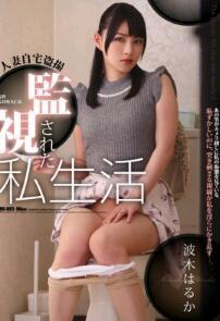 RBD-865 人妻自宅盗摄 被监视著的私生活 波木遥【中文字幕】